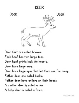 Language Arts, Science/Nature and Writing NO PREP Literacy Center:  DEER