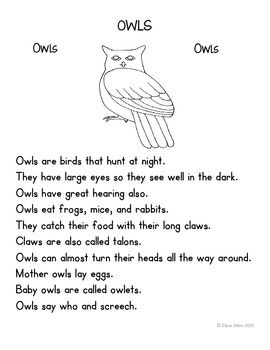 Language Arts, Science/Nature and Writing NO PREP Literacy Center: OWLS