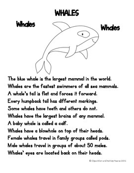 Language Arts, Science/Nature, and Writing NO PREP Literacy Center:  Whales