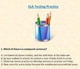 Language Arts Standardized Testing Pre Test & Practice