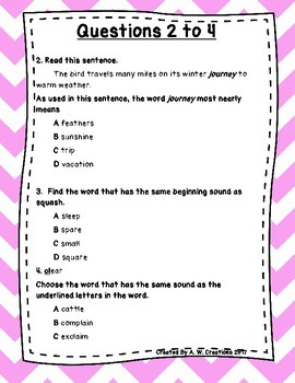 Language Arts Test Prep (Syn., Ant., Cont. Clues, and Cons.) Task Cards Set 3