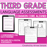 Language Assessments for Third Grade