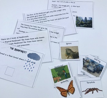 Language Fun_Welcome to the Greenhouse_differentiated learning