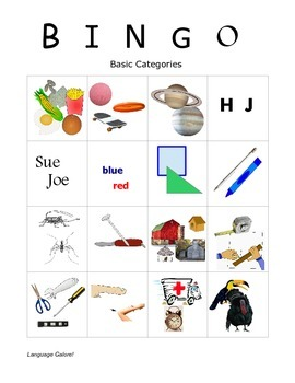 Language Galore's Bingo Pack Two:  Antonyms & Synonyms, Categories, and Pronouns