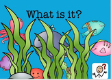 Language Learning with Sea and Zoo Critters: Speech Langua