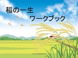 Language Packet: Life Cycle of a Rice Plant (Japanese)