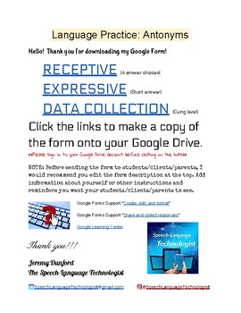 Language Practice: Antonyms Google Form for Speech Therapy and English/LA