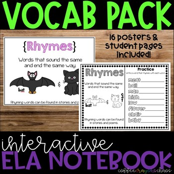 Vocabulary Posters & Student Notebook Pages