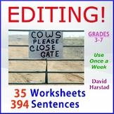 Editing and Proofreading Worksheets   35 Grammar Worksheets (Gr. 3-7)