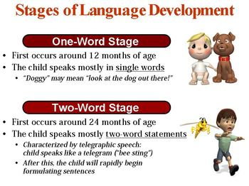 Language Structure and Development PowerPoint