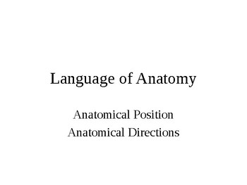 Language of Anatomy Presentation