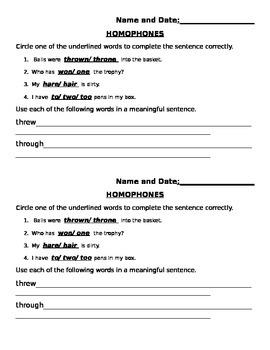 Languge Arts Homophones Assessment 2