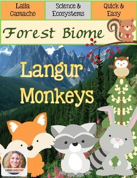 Forest Animals Langur Monkey