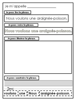 L'animal idéal - Primary French Activities for 'The Best Pet'
