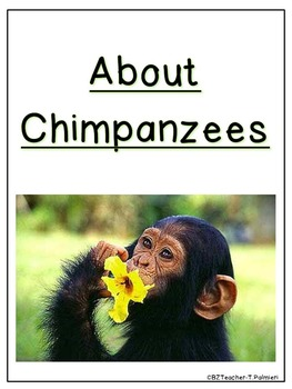 """Lap Book """"About Chimpanzees"""" with Everything you need!"""