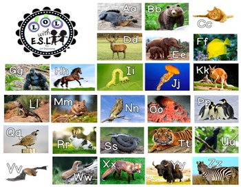 Large Alphabet Posters Letters in the Zoo