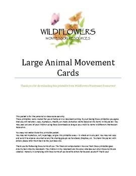Large Animal Movement Cards