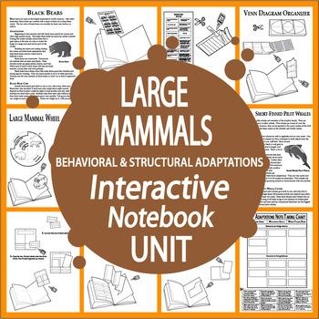 Large Mammals Interactive Unit – Vertebrates Structural & Behavioral Adaptations