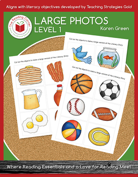 Level 1 Large Pictures for Literacy Stories