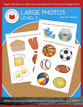Level 2 Large Pictures for Literacy Stories