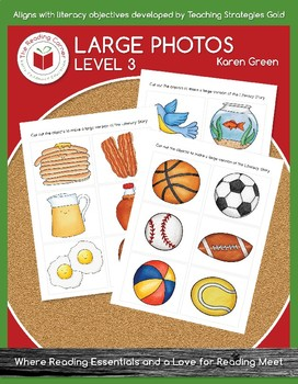 Level 3 Large Pictures for Literacy Stories