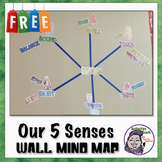 Middle School Classroom Decoration: 5 Senses Mind Map (Large Wall Size)