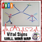 Middle School Classroom Decoration: Vital Sign Mind Map (Large Wall Size)