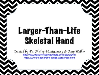 Larger-Than-Life Skeletal Hand