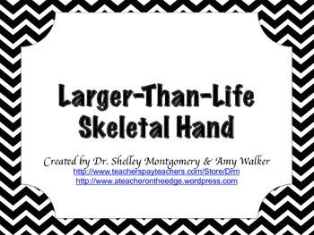 Larger-Than-Life Skeletal Hand