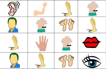 Las Partes Del Cuerpo / Body Parts in Spanish - Bingo