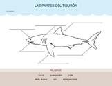 Las Partes Del Tiburón (Parts of the Shark)