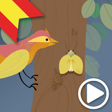 Las Teorías de Darwin, Animated Video