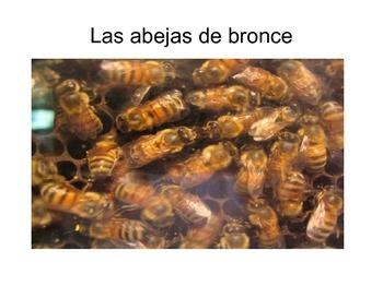 Las abejas de bronce