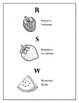 Las frutas (fruits) spanish worksheet