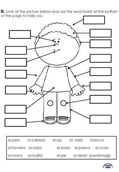 Las partes del cuerpo TEST 3rd grade
