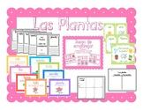 Las plantas vocabulario ilustrado / Plants Picture Vocabulary and Activities