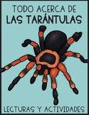 Las tarántulas / Tarantulas in Spanish