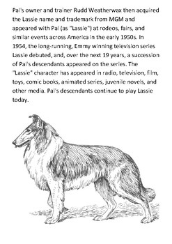 Lassie Handout