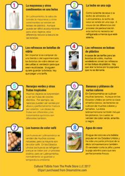 Latin American Groceries Infographic (en español)