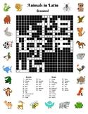 Latin Animals Crossword