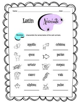 Latin Animals Worksheet Packet