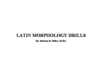 Latin Morphology Drills