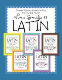 Latin Noun Bundle #1 - 5 packs of puzzles in one bundle
