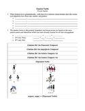 Latin Passive Indicative Verbs Interactive Notebook