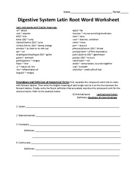 Latin Root Word Worksheet for Digestive System Unit
