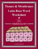 Tissues & Membranes Latin Root Word Worksheet