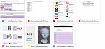 Latin Vocabulary Bundle (Set 2 of 3) corresponding to Rufus Lutulentus Novella