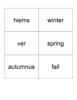Latin Vocabulary Flash Cards
