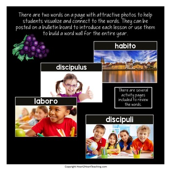 Latin Vocabulary Posters and Activities for Prima Latina Lessons 1-5 (Set #1)
