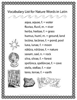Latin Vocabulary Puzzles - Review of Nature Words for First Year Latin Students